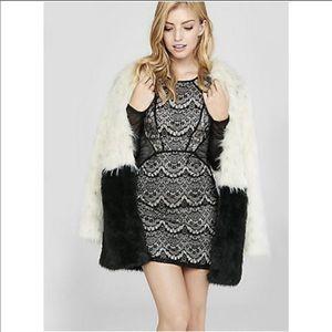 Express Mixed Lace & Fishnet Sheath Dress